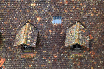 Old brown tile roof with dormer
