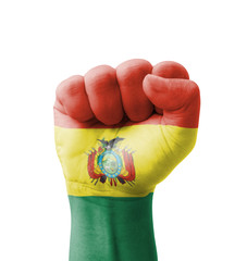 Fist of Bolivia flag painted, multi purpose concept