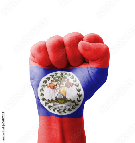 Fist of Belize flag painted, multi purpose concept