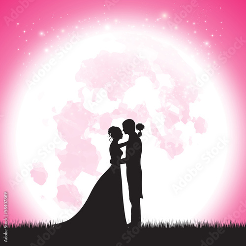 Wedding at the moon pink vector