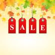 Herbst Sale Hintergrund Quadratisch