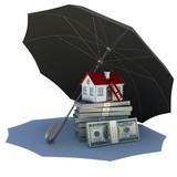 Umbrella covers a small house and money