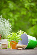 Outdoor gardening tools