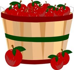 bushel of apples in basket