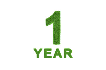 1 Year eco-friendly anniversary celebration