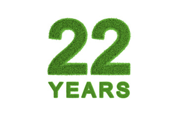 22 Years green grass anniversary numbers