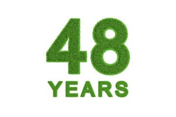 48 Years green grass anniversary numbers
