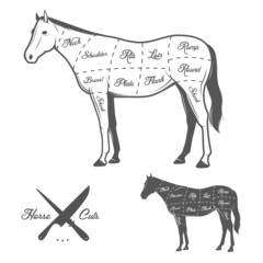 Butchers cuts of horse diagram