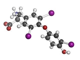 Triiodothyronine hormone (t3, liothyronine) molecule