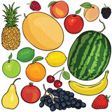 vector set of 18 cartoon fruits