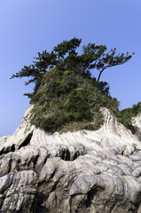 三浦半島荒崎海岸