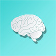 Brain Background Hirn Icon Web Buttom Knopf