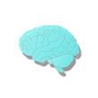 Brain Hirn Intelligenz Anatomie denken Mensch