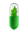 Grüne Tablette mit Pflanzeninhalt