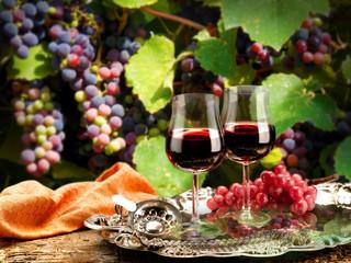 bicchieri di vino in vigneto