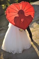 Bride and Bridgroom under the umbrella