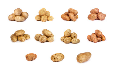 set of potatoes isolated on white