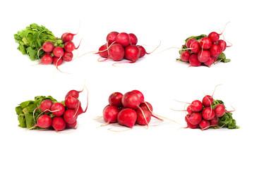 set of bunch of fresh radishes isolated on white
