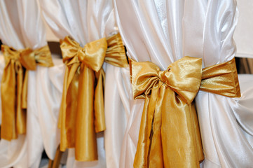 Wedding chairs in row decorated with golden color ribbon