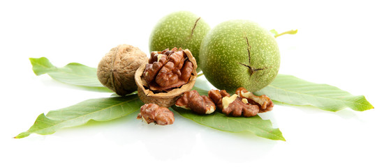 walnuts with green leaves isolated on white