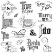 Calligraphic Wedding Elements - for design and scrapbook