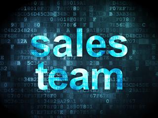 Marketing concept: Sales Team on digital background
