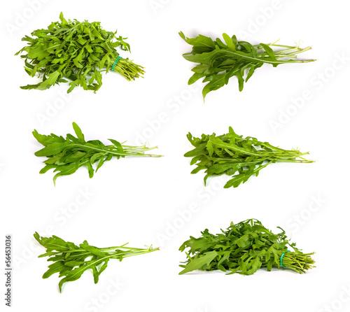 set of Arugula/rucola  fresh heap leaf on white