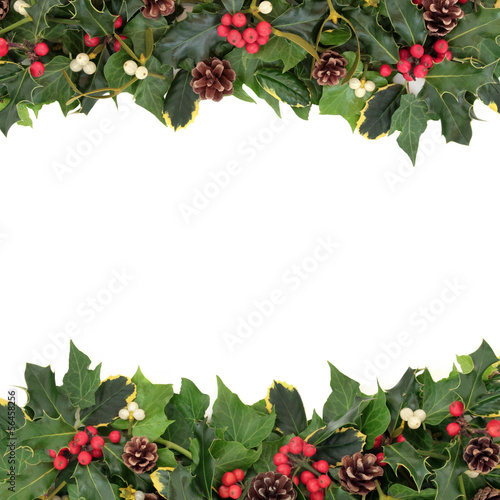 canvas print picture Christmas Floral Border