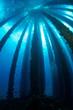 underwater oil rig