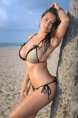 Seductive woman in a beach leaning on a palm tree