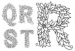Capital letters Q, R, S, T with floral elements