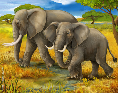 Safari - elephants - illustration for the children