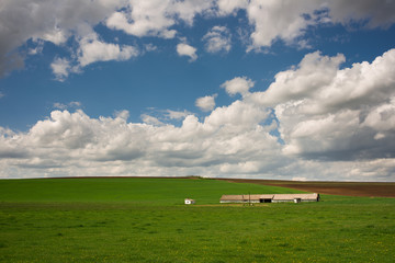 Farm in green field and blue cloudy sky