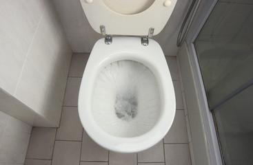 WC Flush