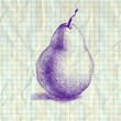 Sketch illustration of pear