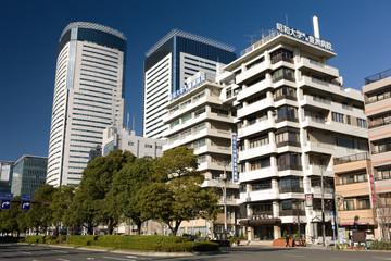 昭和大学付属豊洲病院