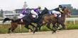 Horse racing at the hippodrome in Pyatigorsk.