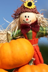 Close-up of pumpkin and cute scarecrow.