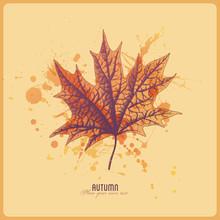 Herbstblatt mit Aquarell splats