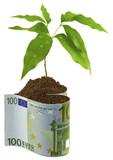 concept coût protection environnement