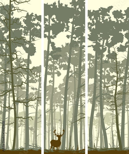 Fototapeta Vertical banners of deer in coniferous wood.