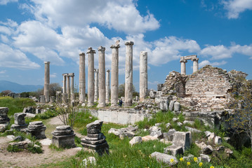 Remains of the ancient city of Afrodisias in Geyre, Turkey