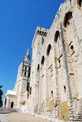 Popes Palace and Notre Dame church in Avignon, France