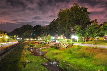 Bishan Park with greenery by night