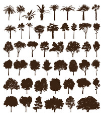 Vector elements trees