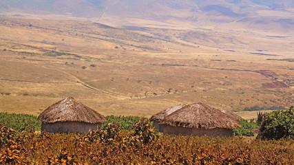 Alrededores pobaldo. Area de Conservacion Ngorongoro. Tanzania