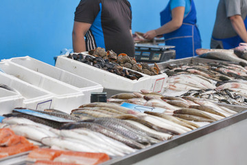 Raw fresh seafood for sale at the market