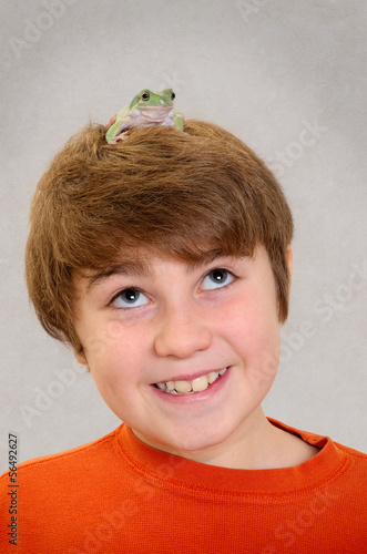 Australian Green Tree Frog on Happy  Boy