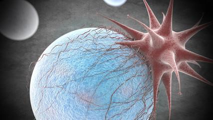 Vista Microscopica  Virus y Células