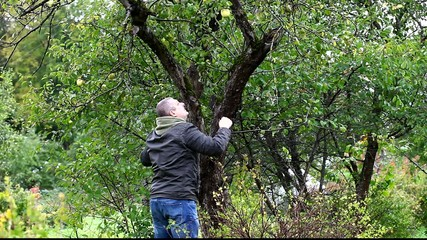 Man try cast off apple in garden episode 2